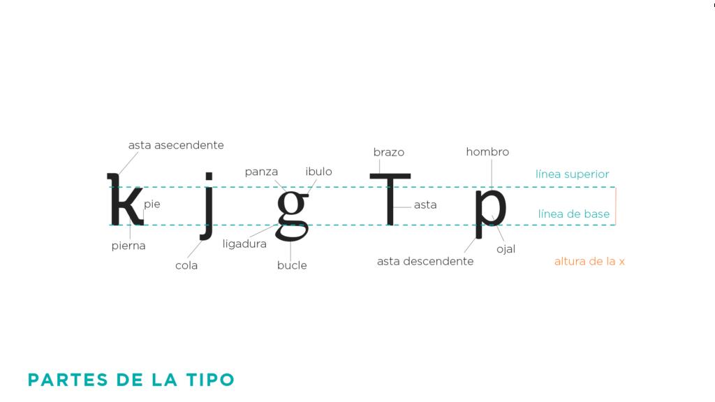 partes-de-la-tipografía---señor-creativo